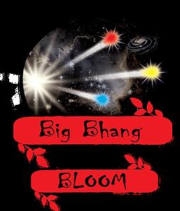 Zen-Products-Big-Bhang-Full-Logo-422h