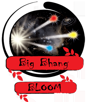 Zen-Products-Big-Bhang-Full-Logo-422h